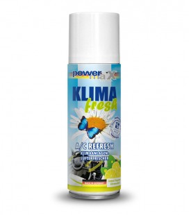 Automobilio vėdinimo sistemos dezinfekantas (100 ml)